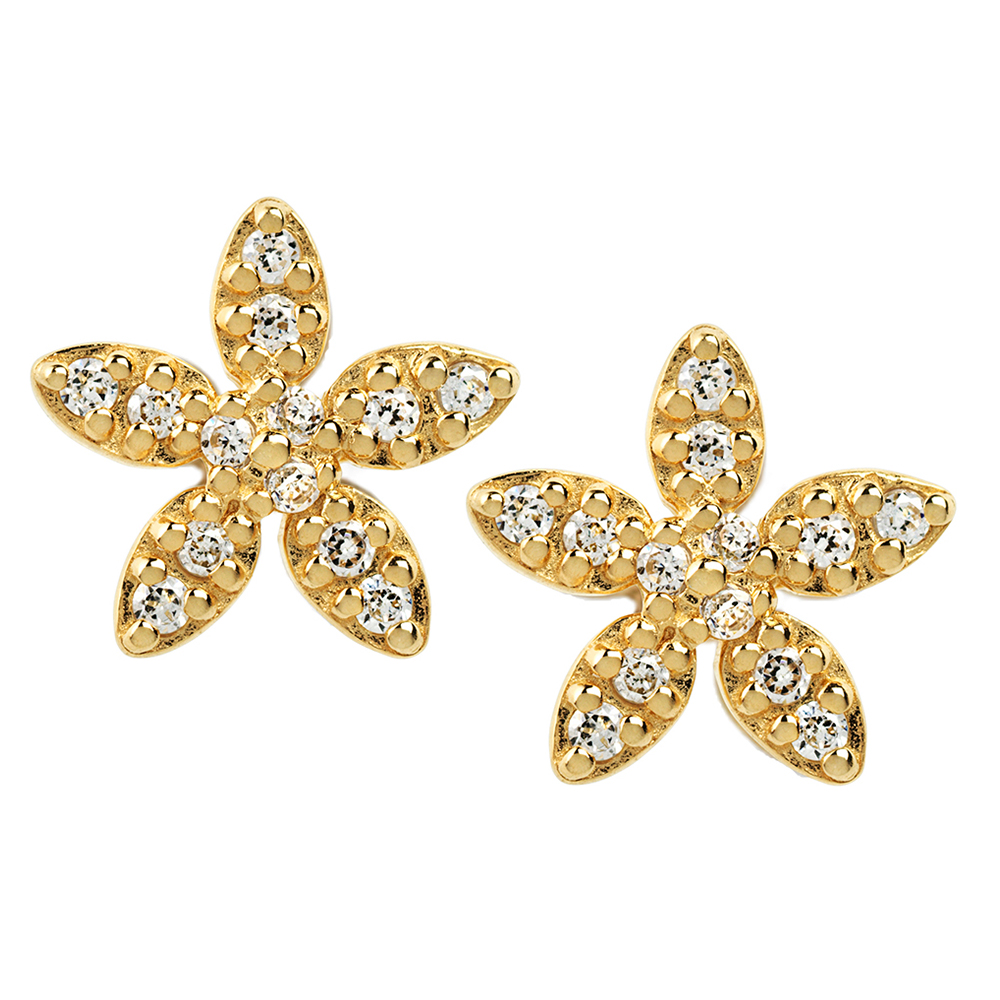 Forget-me-not sparkles - GP